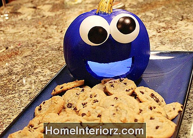 Cookie monster pompoen