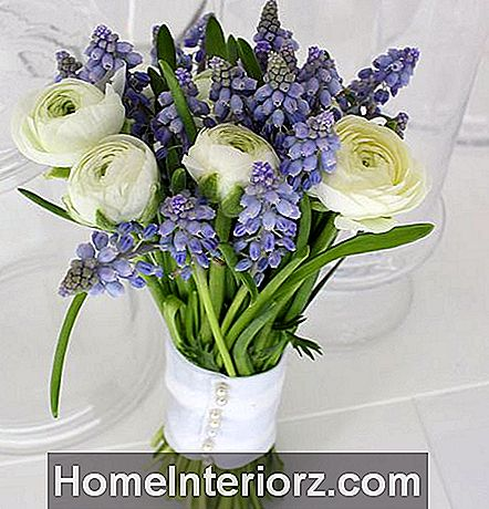 Ranunculus och Grape Hyacinth Bouquet