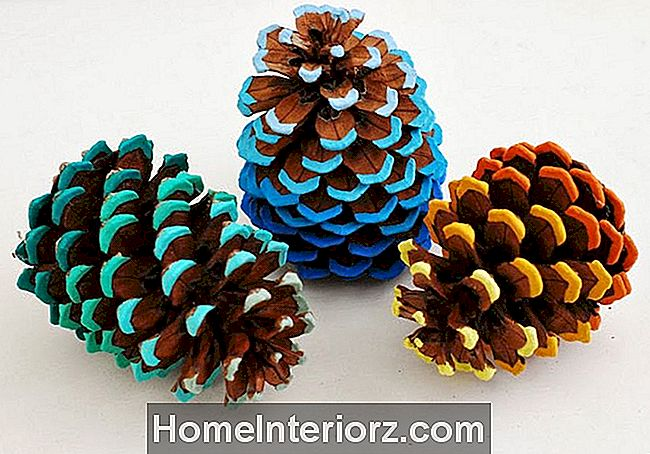 ombre målade pinecones