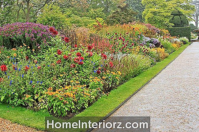 Color Blocking Garden Design