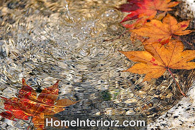 Fall Bird Bath