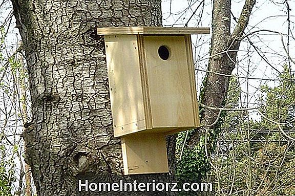 Bird House komplektid