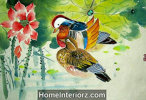 Mandarin Ducks on Feng Shui Cure for Love