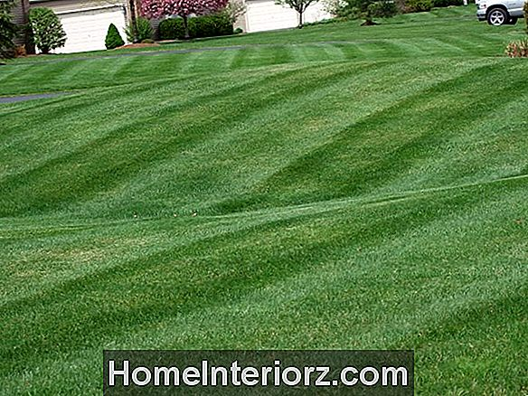 Striping the Lawn
