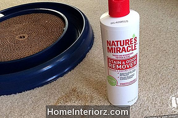 Produktanmeldelse - Nature's Miracle Stain and Odor Remover