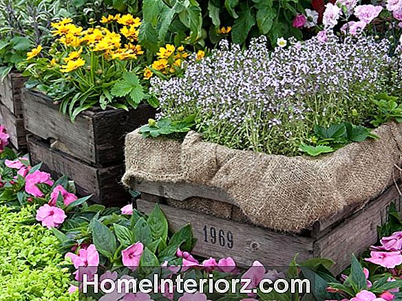 Easy Flower Garden Hacks
