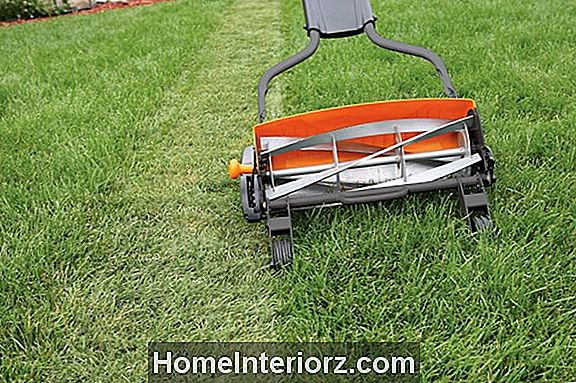 Lawn Care Under tider av torka