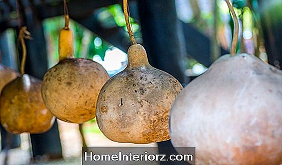 Gourd Decorating